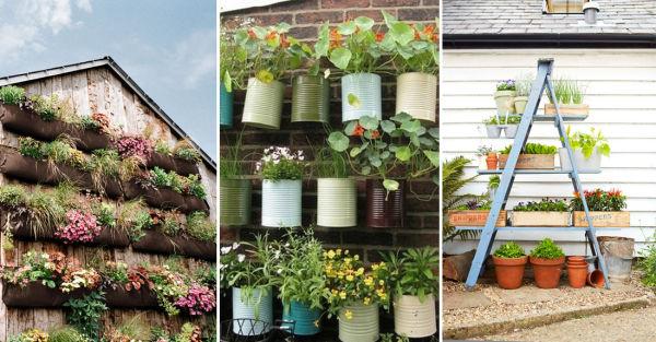 Haz en casa tu propio jard n vertical paz de selva verde for Materiales para jardines verticales